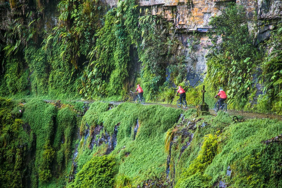 Participants of the descent of The Worlds Most Dangerous Road at Cumbre pass altitude 4700 m, called