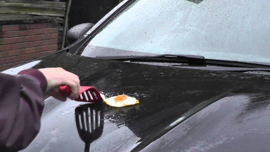Fried Egg Car Bonnet