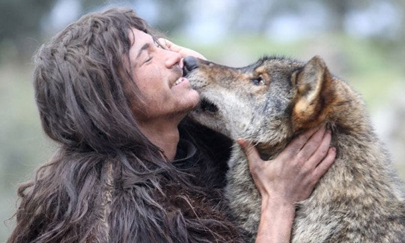 Friends with wolves