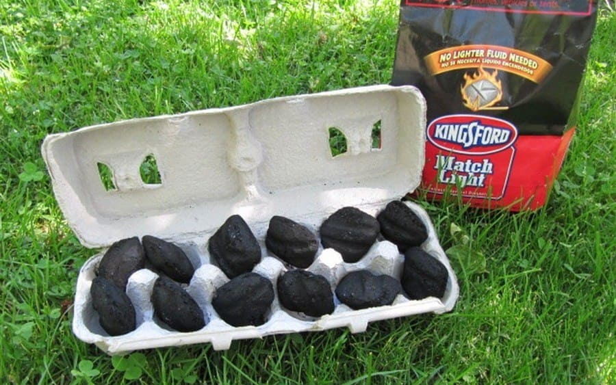An empty egg carton filled with charcoal