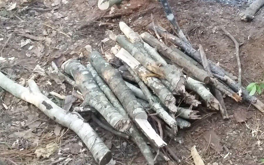 Dry firewood on the floor
