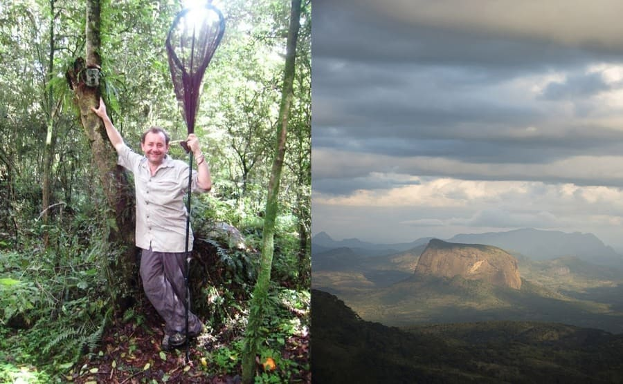 Julian Bayliss standing next to a tree with his butterfly net / A view of the mountain from afar next to a second view of it covered in clouds