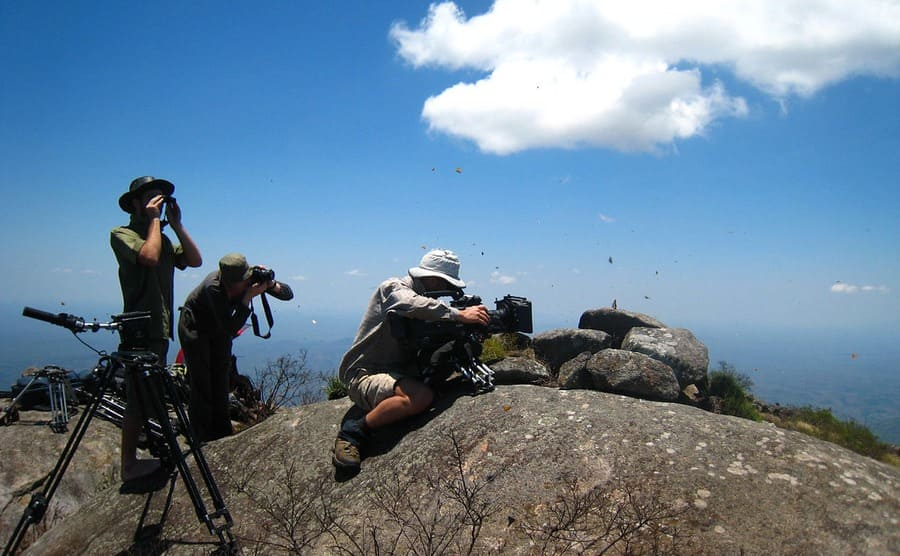 Some of the crew filming butterflies on top of the mountain