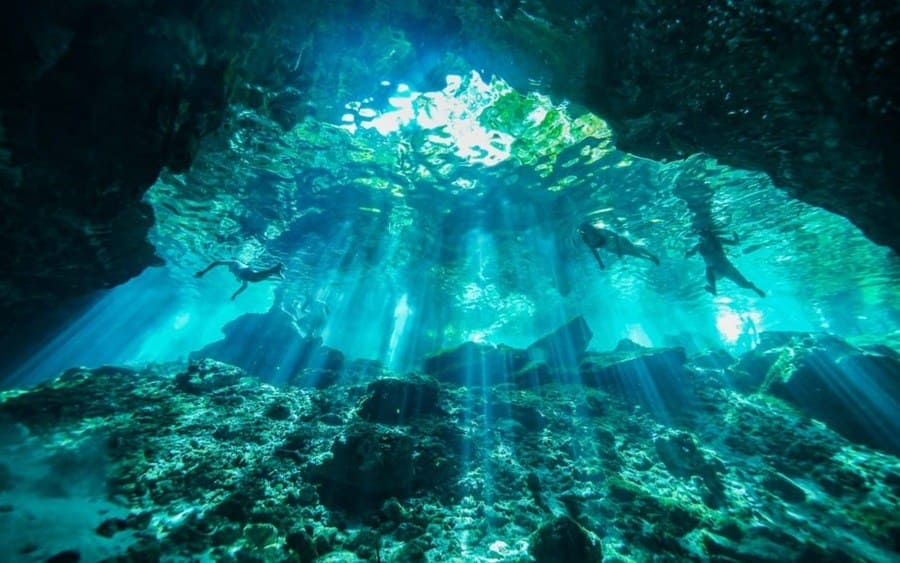 Cenotes are large sinkholes that you can find within the land in Belize.