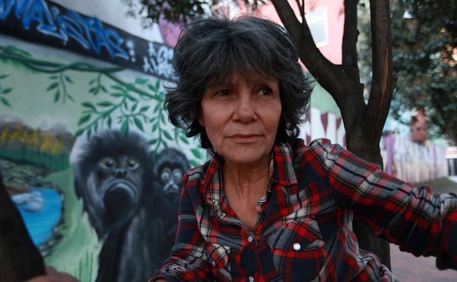 Maria Chapman in a tree in front of graffiti of gorillas