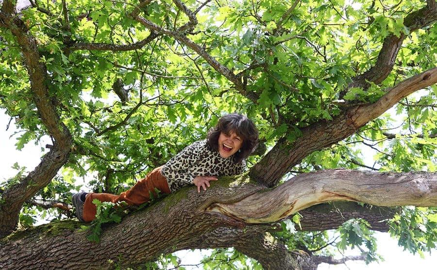 Marina lying on a tree branch