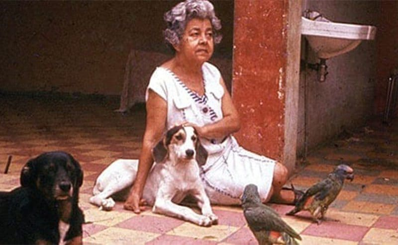 Maruja sitting on the ground with two dogs and two birds