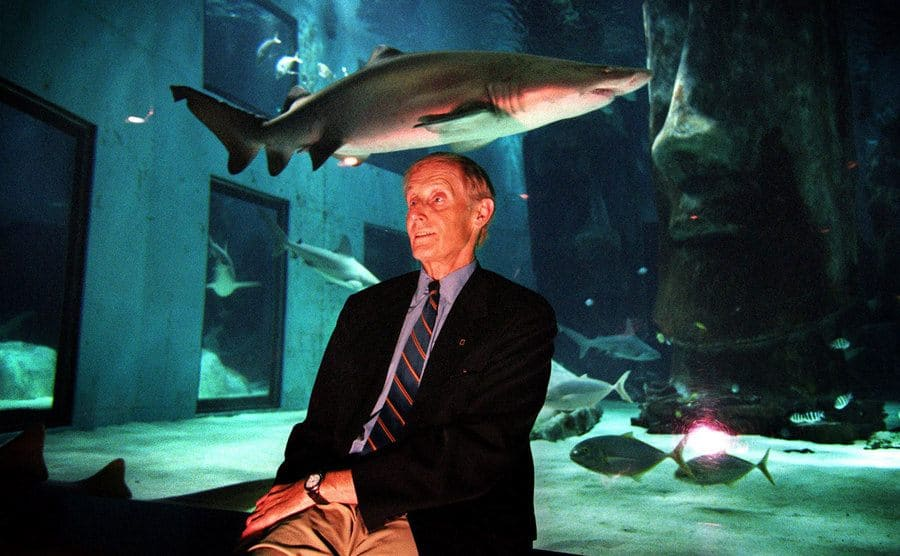 Peter Benchley sitting in front of a shark tank
