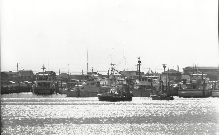 Montauk Harbor in Long Island, NY with boats docked against the pier
