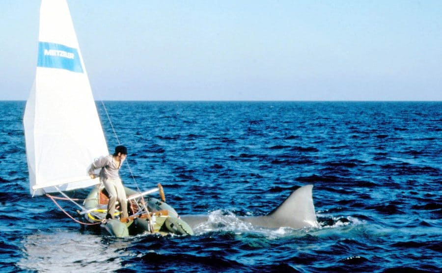 A man on the tip of a sinking boat with the shark around him