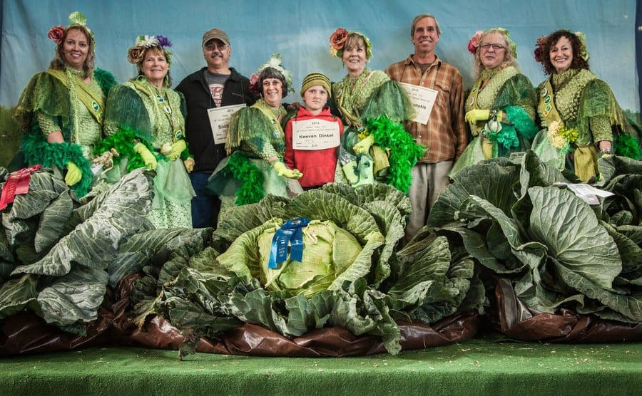 First, second, and third place winners of the giant vegetables at the Alaska state fair, they stand behind their prize winning giant cabbges.