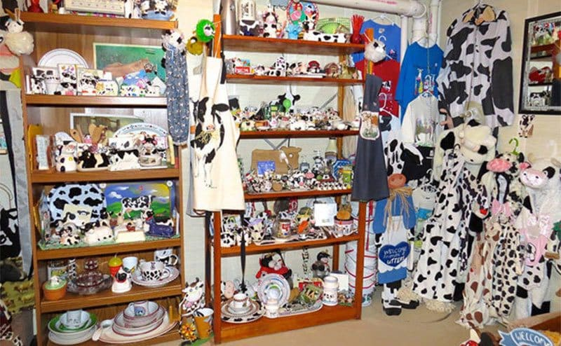 A room filled with cow paraphernalia, shelves, and racks covered in cow print items.