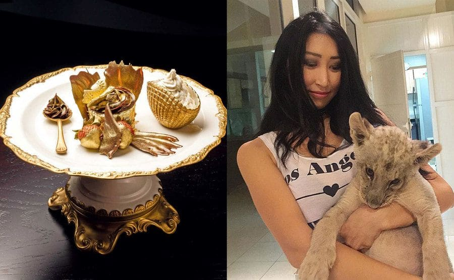A dessert with edible gold on chocolate, a cupcake, and strawberries / A girl holding a tiger cub