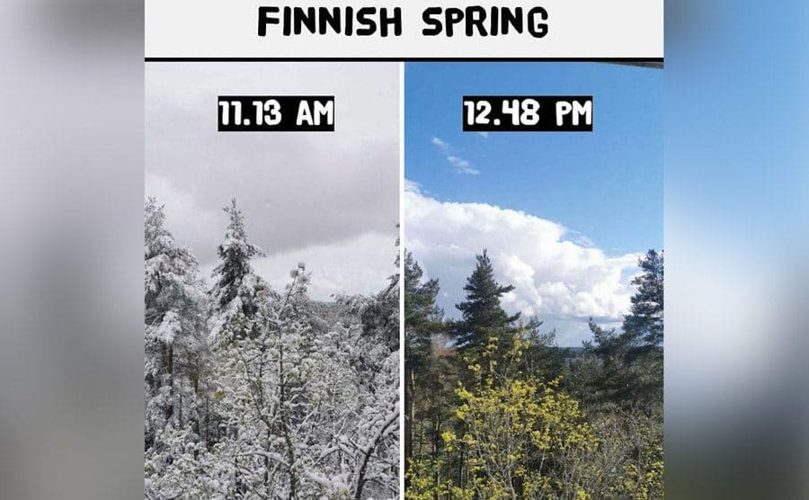 A snow-covered view at 11:13 AM vs. that same view looking like blooming spring at 12:48 PM.