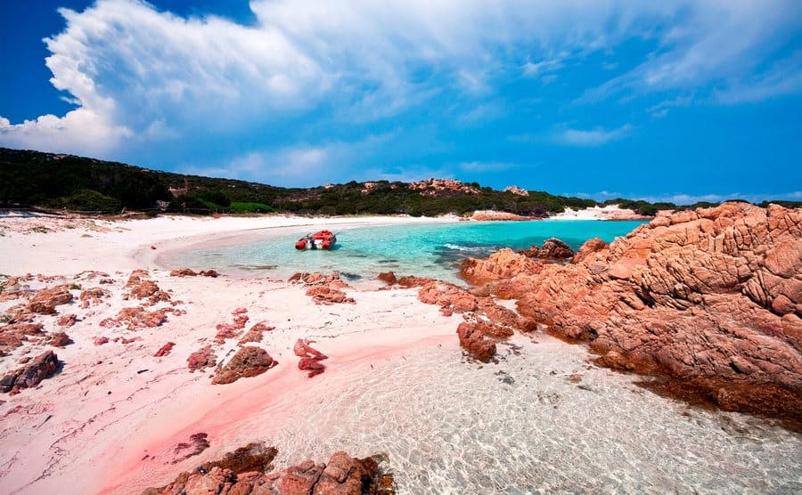 The pink sand beach of Budelli.