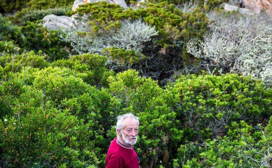 Mauro Morandi is standing amidst the greenery on the island.