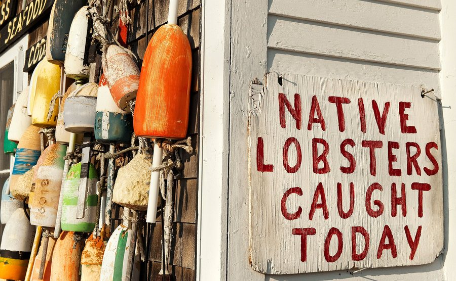 A fresh lobster sign on Cape Cod.