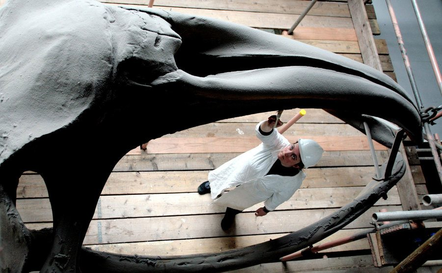 A conservator at the museum cleans a whale's jaw.