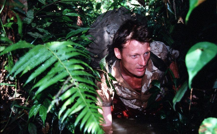 Allen is walking through the jungle.