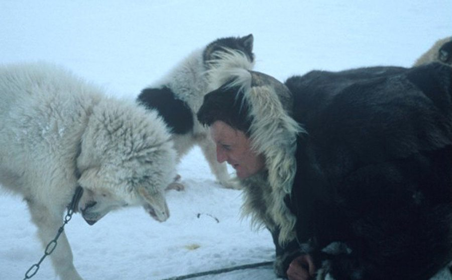 Allen shares a moment with one of his slay dogs while in Siberia.