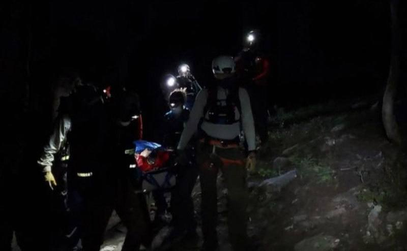 The firefighters carry the hiker through the forest.
